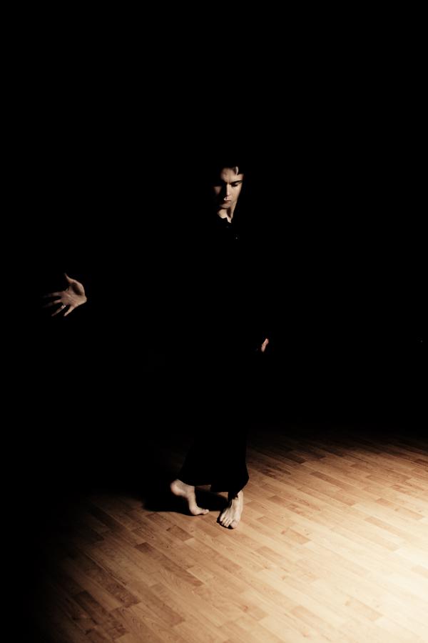 Alessandro Barbero, Ballerino Professionista